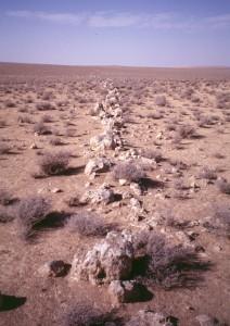 """Le """"Très Long Mur"""" sur la plateforme de 'Ayn al-Zarqa où ne subsistent que des blocs de travertin (cliché Mission Marges arides)."""