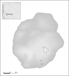 Fig. 1 Plan topographique de Tell Aswad.