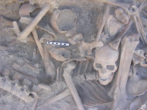 Fig. 10 : Tell Brak mass grave.
