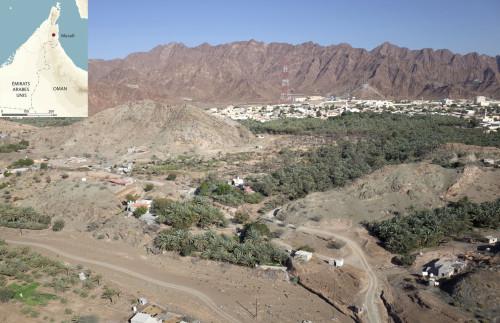 Fig. 1 : l'actuelle palmeraie de Masafi (photo T. Sagory).