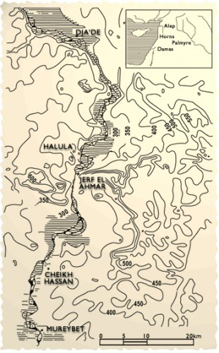 Fig. 1. Situation géographique de Jerf el Ahmar.