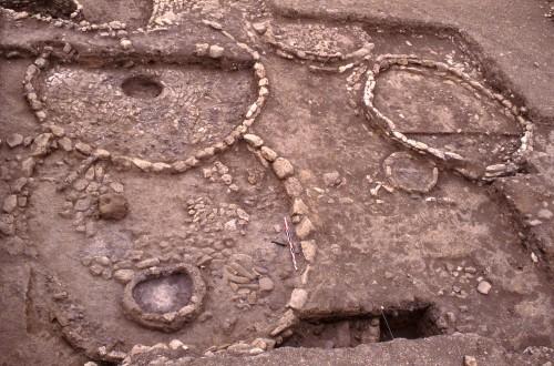 Fig. 2. A la phase ancienne toutes les maisons sont arrondies et monocellulaires. EA28 (IV/E) coupe EA37 (V/E), plus ancienne. Photo Mission El Kowm-Mureybet