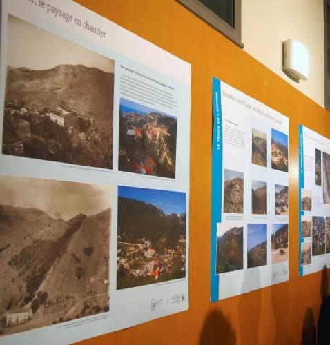 Fig. 5 : Quelques panneaux dans le hall de la Maison de l'Orient et de la Méditerranée
