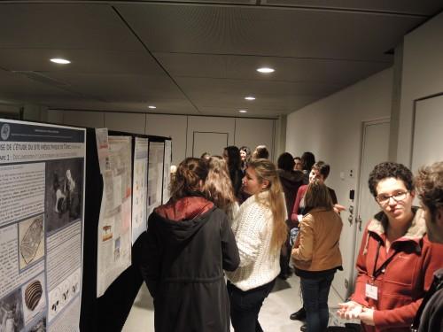 Fig. 3 : Session posters autour des actualités de la recherche (photo J. Bruzek)