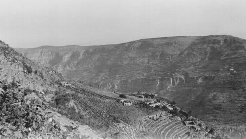Photo 1 : Vue d'un hameau de Mouradiyé sur le versant de rive gauche du Nahr Ibrahim ; nombreuses terrasses enfrichées au premier plan, bâtiments ruinés sur le promontoire, vers 1925 © Fonds J. Delore, Bibliothèque Orientale, USJ, Beyrouth.