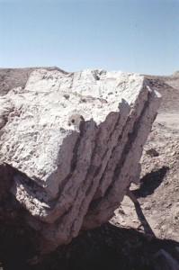 Fig. 8 : Uruk (Warka, Iraq), dalles de gypse moulé, Uruk récent (cliché Oriental Institute de Chicago).
