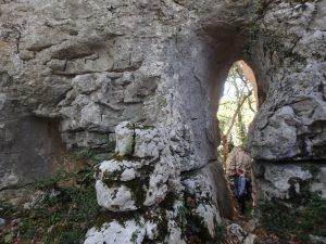 Fig. 9 : Pendant l'excursion dans le bois de Païolive (photo Sidonie Chevrier)