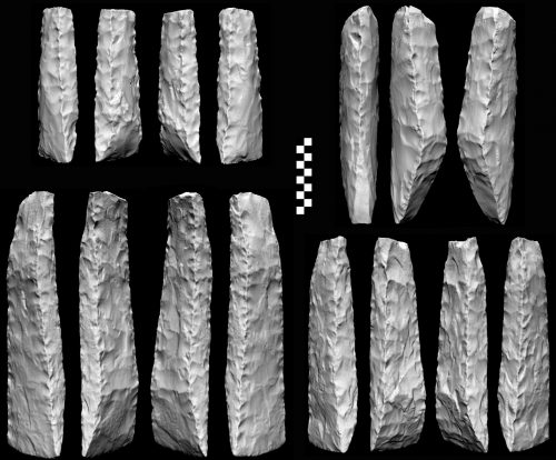 Figure 5. Illustrating with scans also allows for new perspectives such as the oblique views of the adzes shown here, which display the fine stitching done with a punch on their edges (From Shipton et al. 2016).